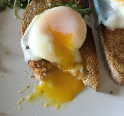 poached eggs close up