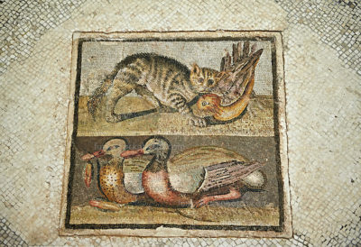 Roman mosaic with cat and ducks. From the Roman villa on Via Ardeatina, next to Cecchignola, Rome. This Roman mosaic floor panel represents a cat trying to catch a bird in flight and two ducks, one of which is holding a lotus flower in its beak. The style