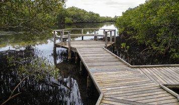 Tweet Head Historical Site, Walk on Water