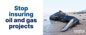 Stop insuring oil and gas projects