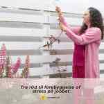 Tre råd til forebyggelse af stress på jobbet