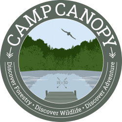 CampCanopy_logo_claims_4C