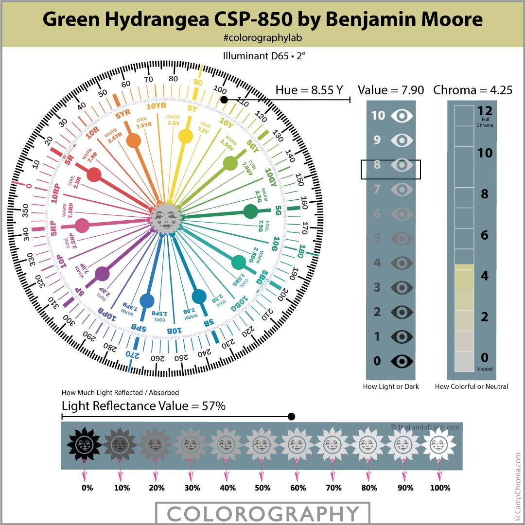 Green Hydrangea CSP-850 by Benjamin Moore