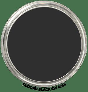 Tricorn-Black-SW-6258 by Sherwin-Williams Paint Blob