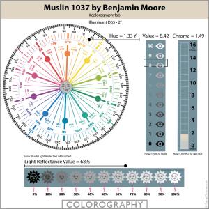 Muslin-1037-Colorography