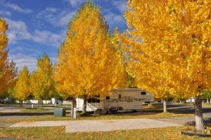 Uncompahgre River RV Park, in Olathe CO, offers long RV sites. For those without RVs, consider tent camping or renting one of their cabins.