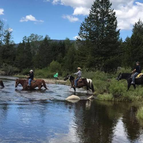 Camp sites near horse trails (photo by Winding River Resort in Grand Lake CO)