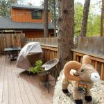 Great deck for socializing at Bristlecone Lodge!