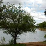Fishing on site is available at Golden Eagle Campground INC in Colorado Springs