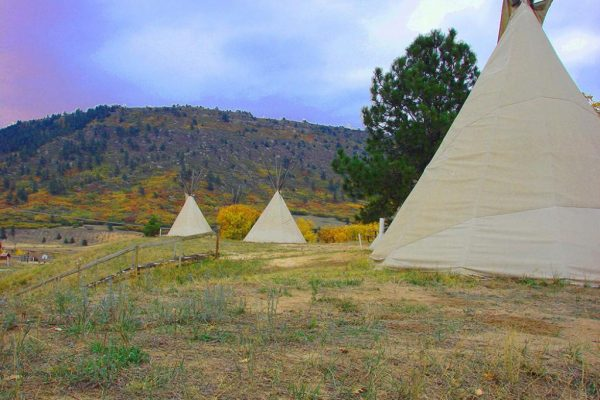 Rental tepees on the ridge at Jellystone Park at Larkspur (Colorado)