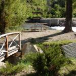 Great picnic spots by the river at Riverview RV Park (Loveland, Colorado)