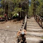 Path to tent spots from the laundry and bathroom at Sugar Loafin' RV Campground & Cabins in Leadville, CO
