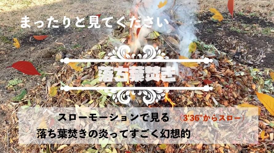 真冬の落ち葉焚き