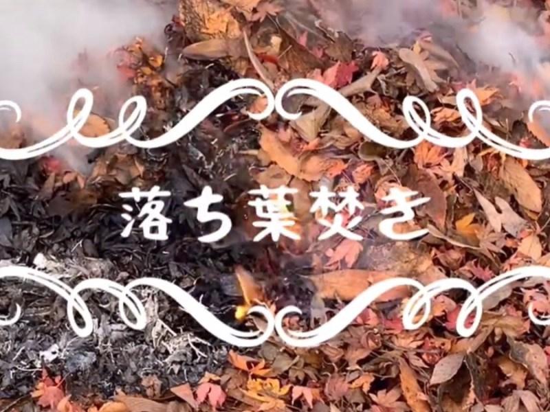 落ち葉焚き