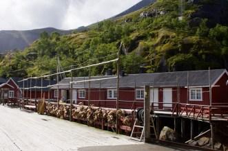 Stelzenhäuser & Fischköppe: Nusfjord
