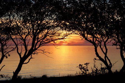Westküste in Öland