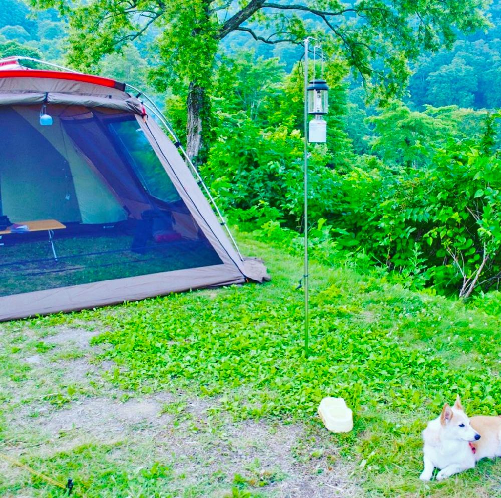 DOD_かまぼこテント