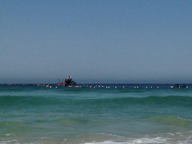 Op grijpafstand liggen in de maanden april en mei de vissersboten voor de kust van Zahara de los Atunes,