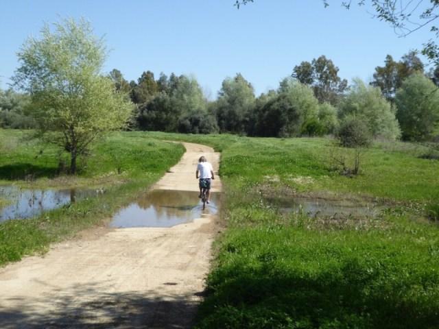 Onze nieuwe tanks hebben het soms zwaar te verduren. Volg je een Via Verde, een voormalige spoorlijn die omgebouwd is tot fietspad, moet je dwars door een riviertje. Deze ging, want de motoren van onze fietsen bleven gelukkig hoog boven het water. Waar? Guadiamar. (Zonnestroom)