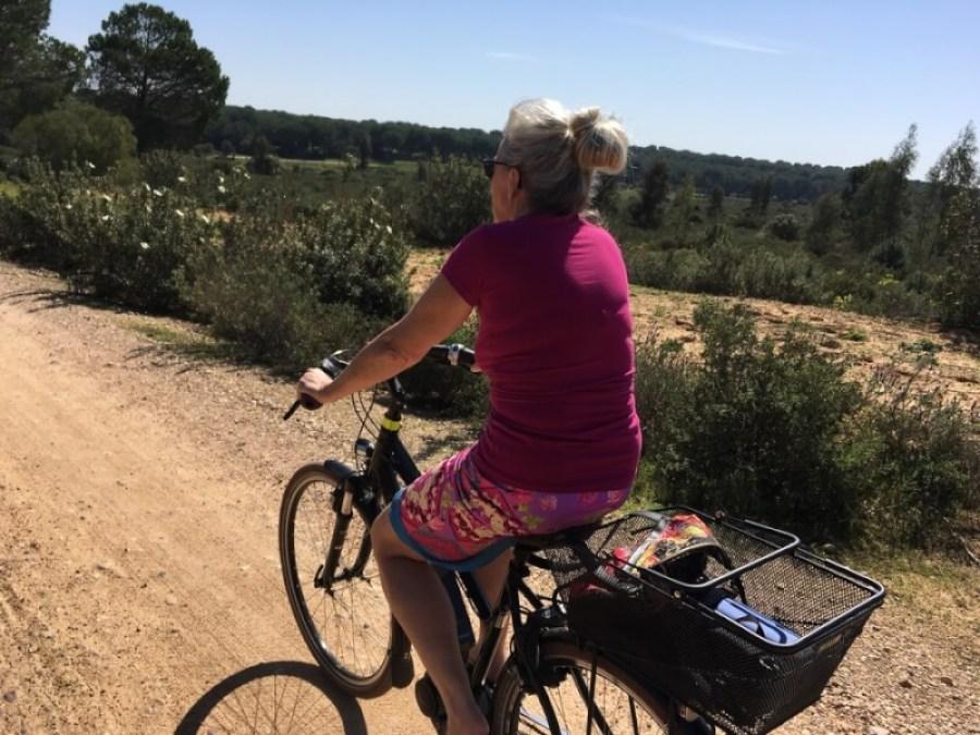 We hebben een vraag- & antwoordlijst gemaakt over onze e-bikes, accu's en zonne-energie.