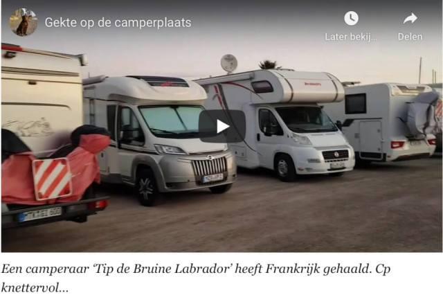 Tip, de Bruine Labrador laat na de vlucht uit Spanje een overvolle parkeerplaats zien in Frankrijk. YouTube
