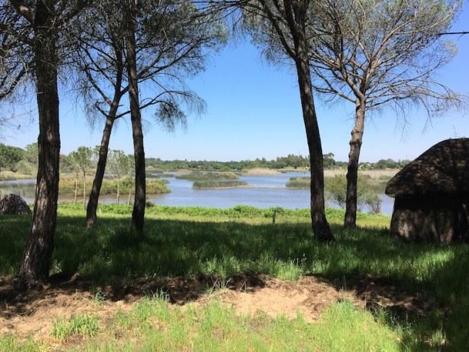 Het natuurgebied La Rociana vlakbij El Rocío nodigt uit om rond te dwalen.