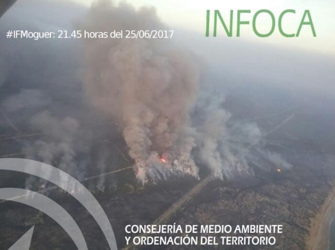 Het begin van de brand bij het plaatsje Moguer. De harde wind van 60 km per uur zorgde ervoor dat het vuur grote sprongen kon maken. Bron: foto INFOCA (de organisatie van de deelstaat Andalucië die de brandbestrijding coördineert)