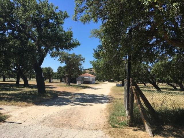 In het achterland van Facinas, waar je fantastisch kan wandelen en fietsen. Facinas heeft sinds kort een camperplek.