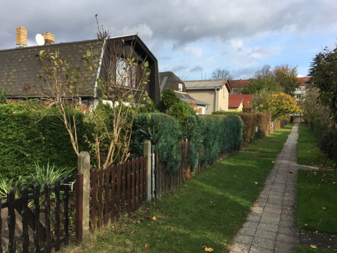 Tientallen Tiny Houses telt het terrein.
