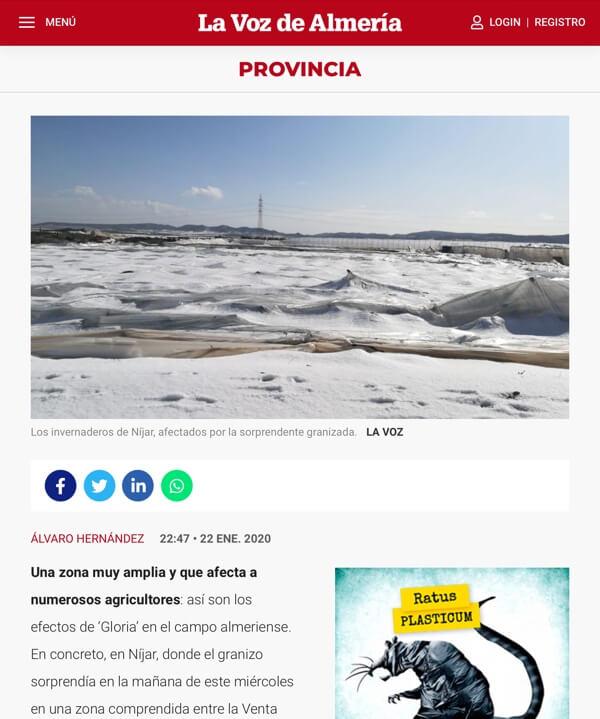 De platgeslagen kassen zijn bedekt met een forse laag ijs. Bron: 'La Voz de Almería'