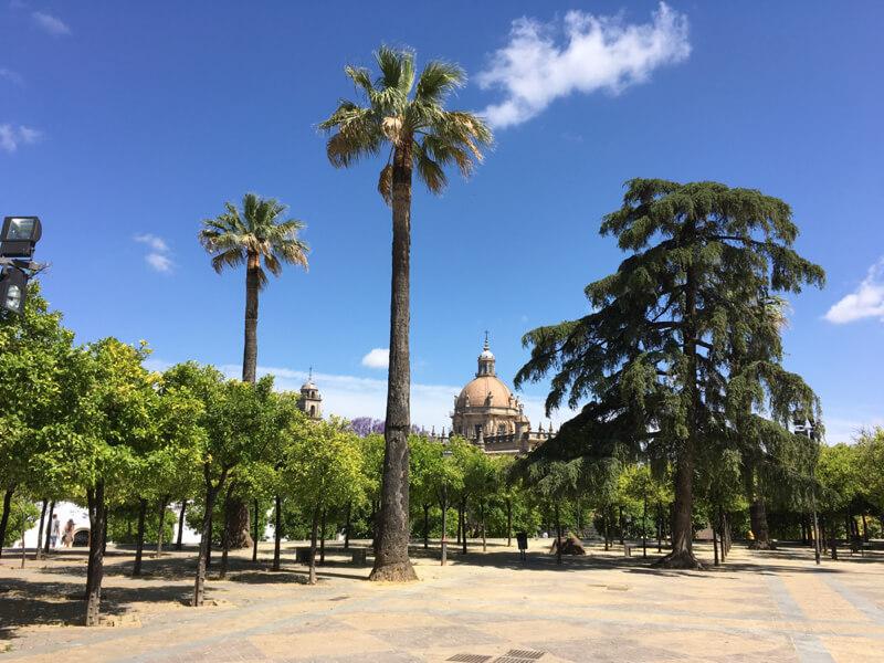 De kathedraal van Jerez de la Frontera. (Costa de la Luz Zuid).