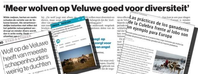 Diverse artikelen in de pers over de wolf en de mastiff (De Stentor, Opinion de Zamora en Zamor24horas.com).