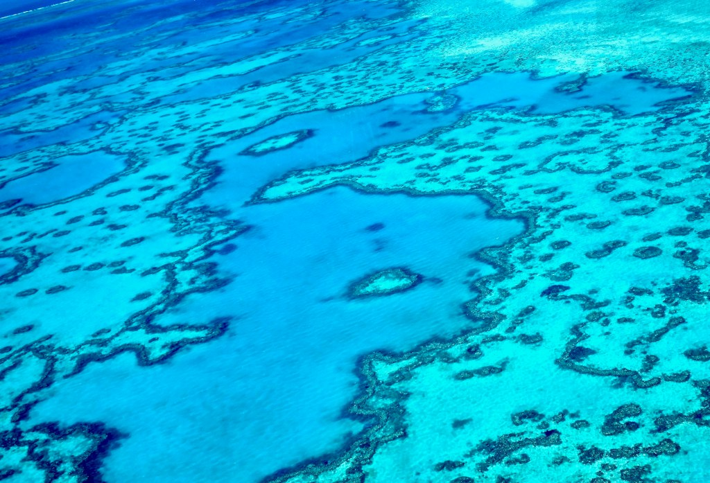 The Heart Formation of Great Barrier Reef