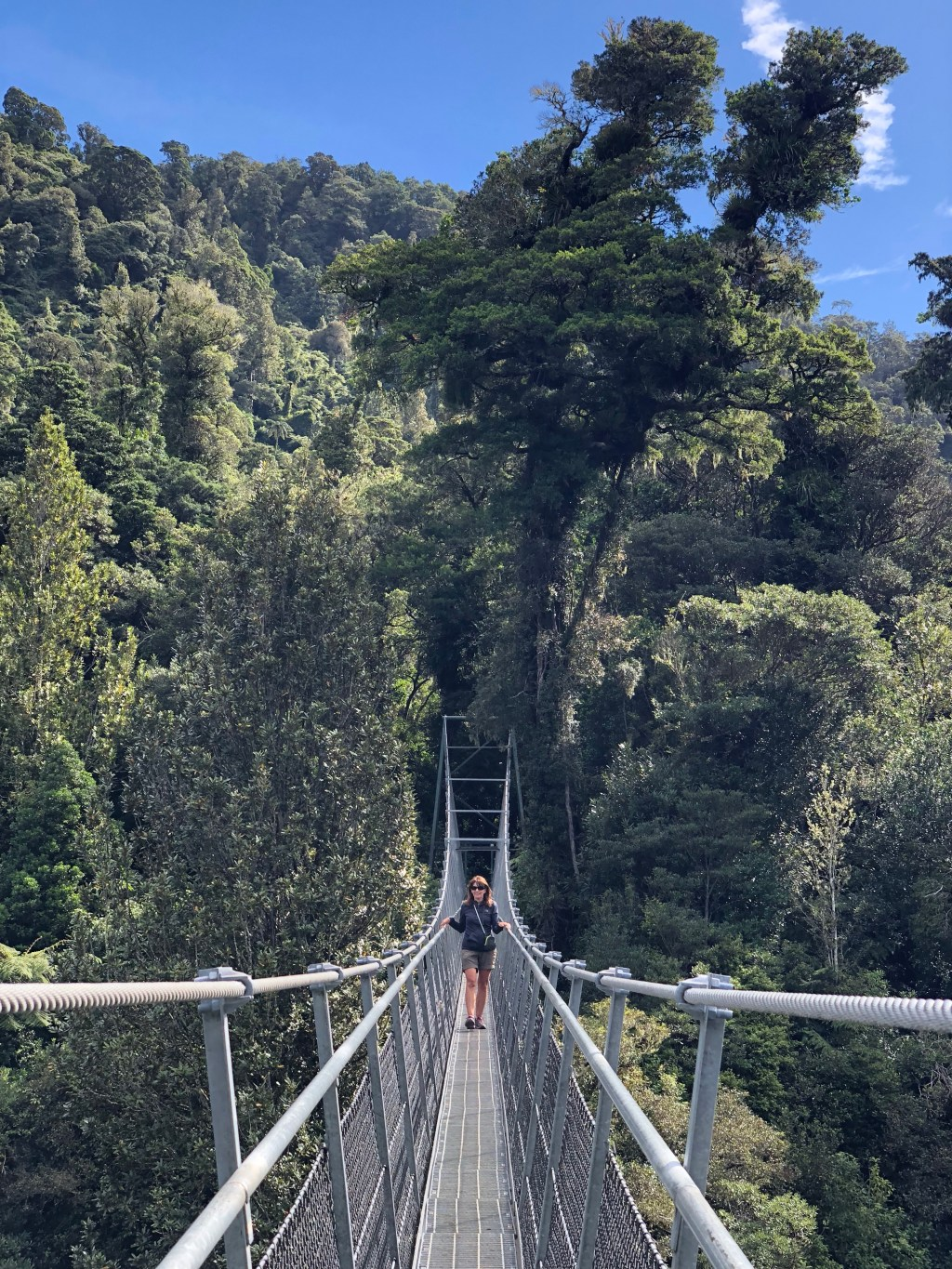 Swing Bridges New Zealand