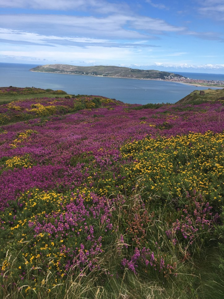 Llandudno The Great Orme Campervan tour North Wales