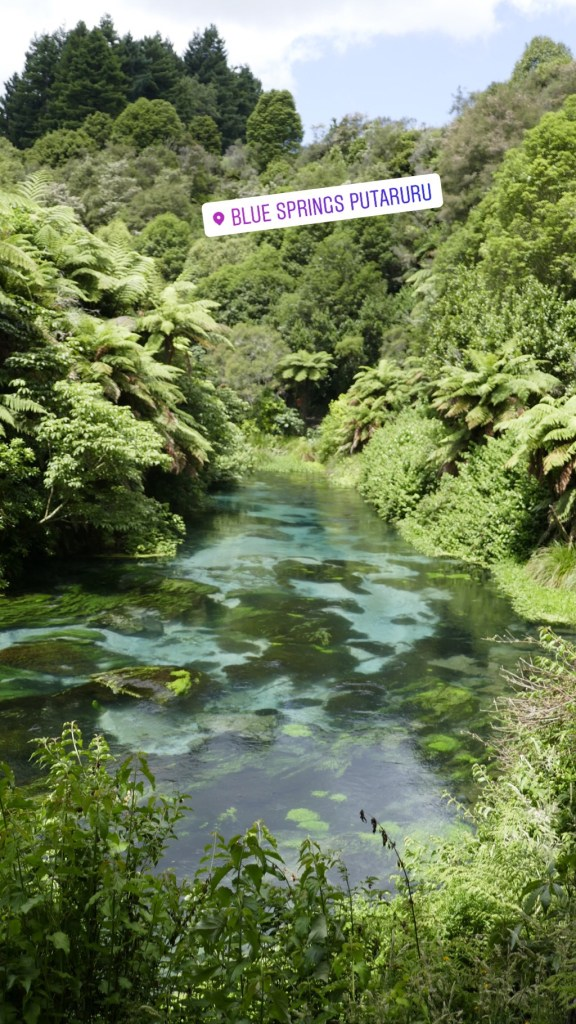 Blue Springs North Island NZ