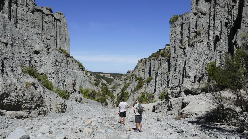 Top 12 Walks In The North Island