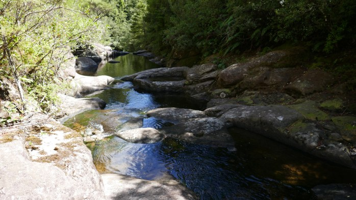 Aongatete Swimming Holes North Island NZ