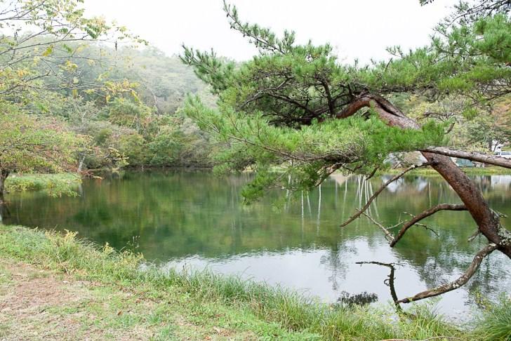 1号サイト湖畔