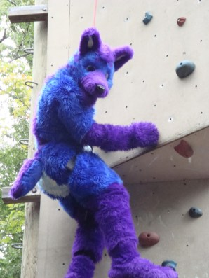 Questionmark Climbing the wall in 2009.