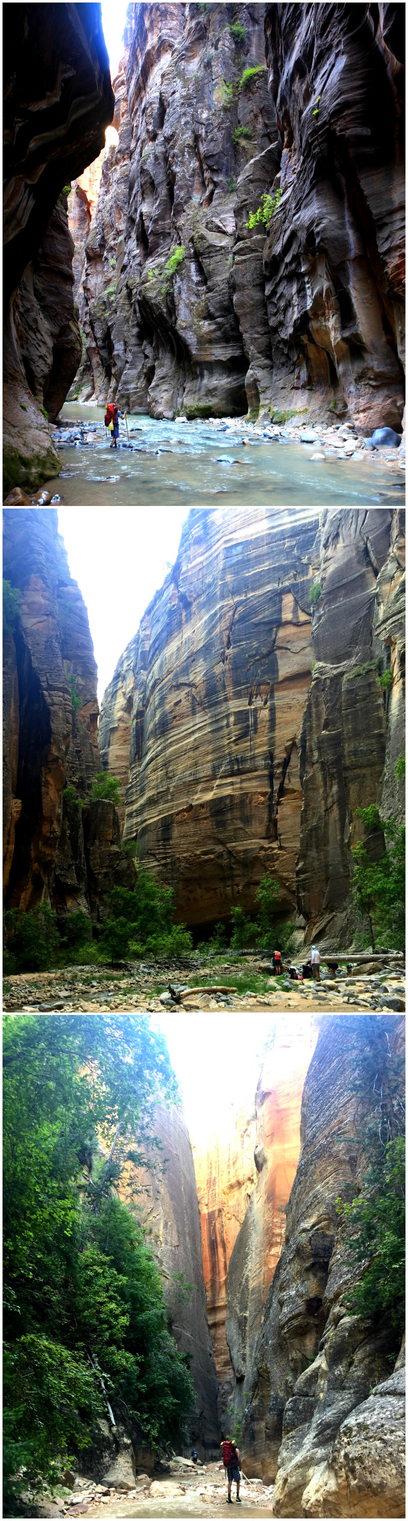 Discover Utah in Zion National Park's Iconic Narrows Hike - Campfire Chic