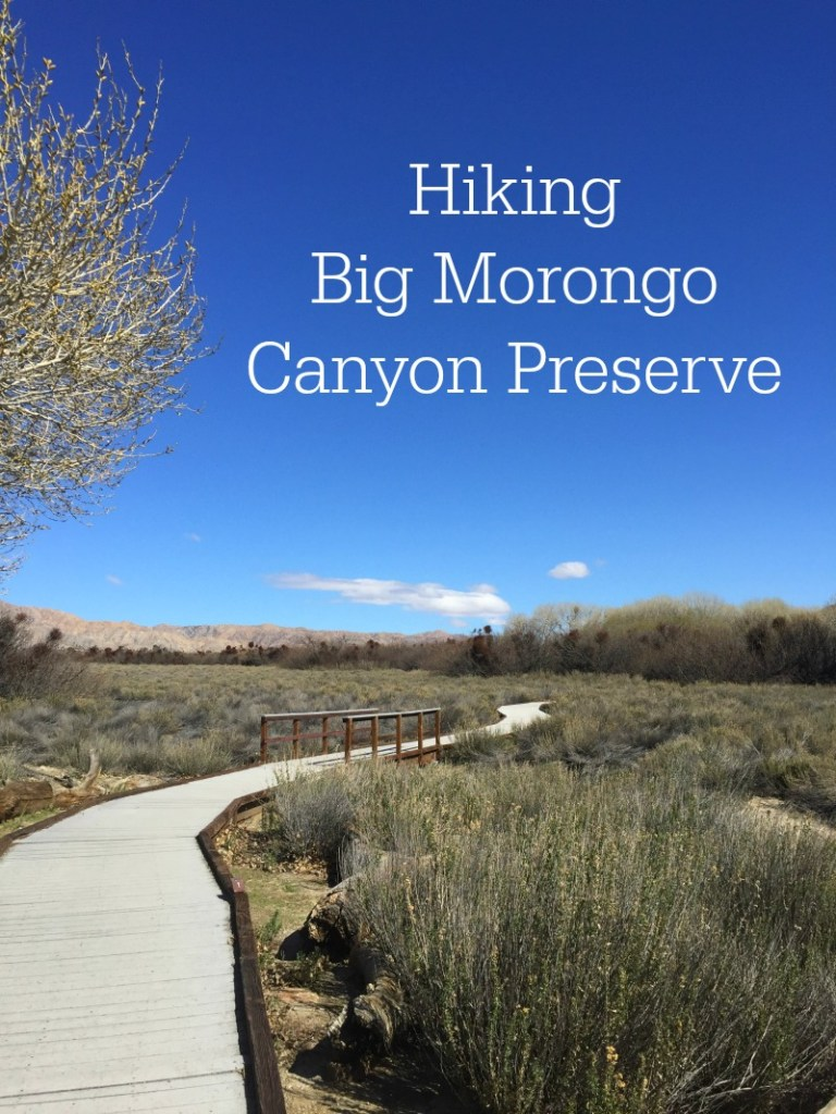 Hiking Big Morongo Canyon Preserve - California Desert Oasis Hiking with Campfire Chic