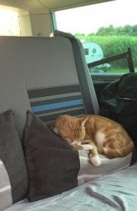 Colin at Field Barn Park makes himself comfy