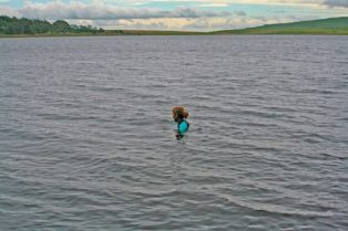 Swimming in Malham Tarn.