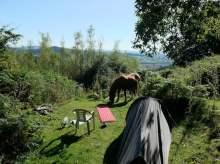 Middle Ninfa campsite
