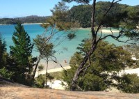 Coastal walk in the Abel Tasman National Park.