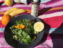 Nasturtium and walnut oil picnic