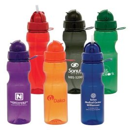 Hummingbird- Bulk Custom Printed Domed Lid Water Bottle with Popup Straw