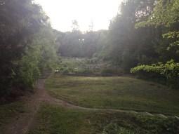 Community garden at Coleman Park P-Patch