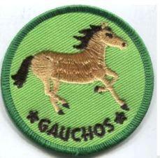 Riding - Gauchos